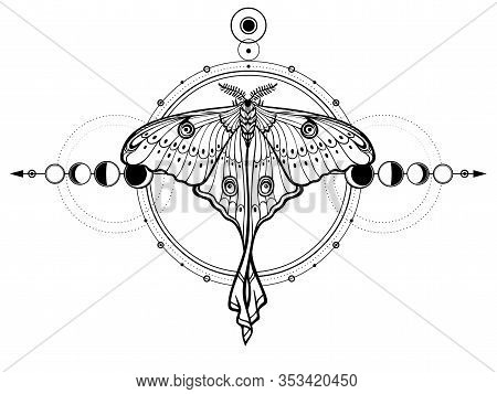 Mystical Drawing: Tropical Butterfly, Sacred Geometry, Moon Phases, Energy Circles. Alchemy, Magic,