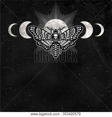 Mystical Drawing: Moth Dead Head, Night Star Sky, Moon Phases. Alchemy, Magic, Esoteric, Occultism.