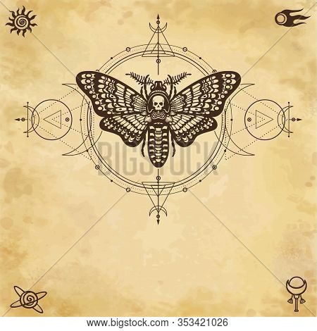 Mystical Drawing: Moth Dead Head, Sacred Geometry, Moon Phases, Energy Circles. Alchemy, Magic, Esot