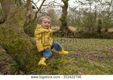 Two Year Old Boy In Yellow Raincoat And Welly Boots Playing Outdoors
