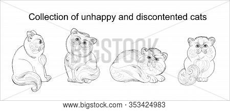 Collection Of Unhappy And Discontented Cats Hand Drawing With Black Gel Pen On A White Background