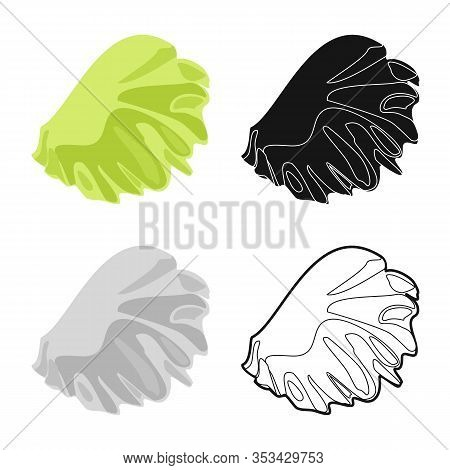 Vector Design Of Salad And Lettuce Symbol. Web Element Of Salad And Leaf Stock Vector Illustration.