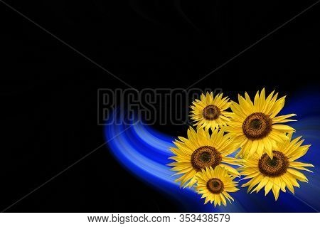 Bouquet Of Sunflower ( Helianthus Annuus ) In Front Of A Colorful Artistic Abstract Twisted Backgrou