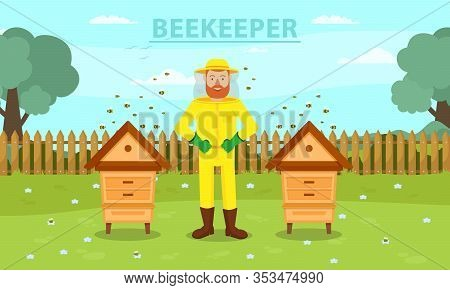 Man Beekeeper In Yellow Protective Suit Between Two Hive. Beemaster At Spiary. Breed Bees. Bees Flyi