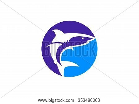 Shark Branding Signs. Shark Logo Symbol In A Rounded Shape. Vector Illustration.