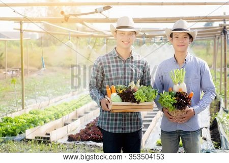 Beautiful Portrait Young Two Man Harvest And Picking Up Fresh Organic Vegetable Garden In Basket In