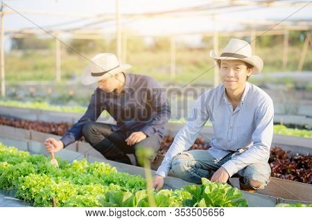 Young Asian Man Farmer Shovel Dig Fresh Organic Vegetable Garden In The Farm, Produce And Cultivatio