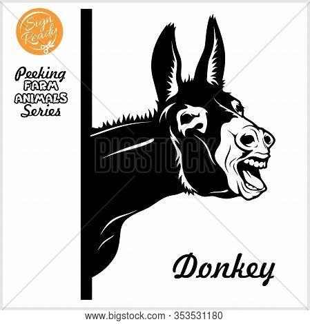 Peeking Donkey - Donkey Screams - Face Head Isolated On White