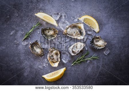 Open Oyster Shell With Herb Spices Lemon Rosemary Served Table And Ice Healthy Sea Food Raw Oyster D