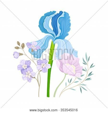 Floristic Composition With Purple Showy Iris Flower On Green Erect Stem Vector Illustration