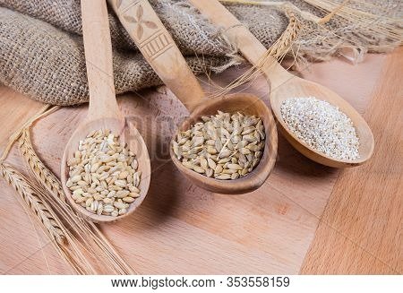 Raw Crushed Barley Groats, Pearl Barley And Whole Barley Grains In Different Wooden Spoons Among The