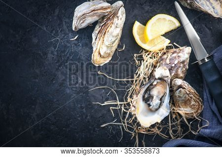 Fresh Oysters close-up with knife, served table with oysters and lemon. Healthy sea food. Oyster dinner in restaurant. Dark background. Seafood, Gourmet food. Flatlay, top view.