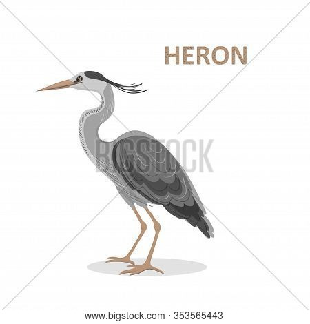 Vector Illustration, A Cartoon Beautiful Great-billed Heron. Isolated On A White Background