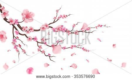 Sakura Blossom Branch. Falling Petals, Flowers. Isolated Flying Realistic Japanese Pink Cherry Or Ap