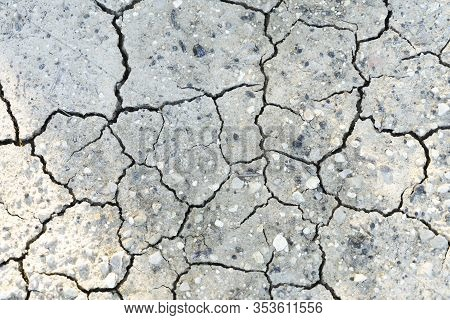 Dried Cracked Earth Soil Ground Texture Background. Pattern Of Sunny Dried Earth Soil With White Pet