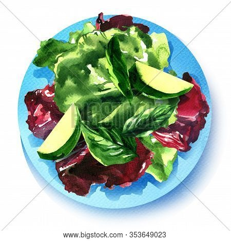 Fresh Mixed Salad With Green Spinach, Romaine And Lettuce Leaves, Vegetarian Organic Salad Mix On Pl
