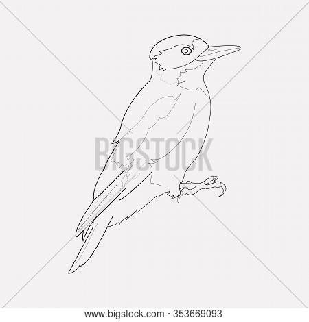 Woodpecker Icon Line Element. Vector Illustration Of Woodpecker Icon Line Isolated On Clean Backgrou