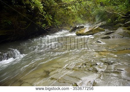 Full-flowing Mountain River N The Carpathian Mountains Forest. River Stream Water View. Wild River R