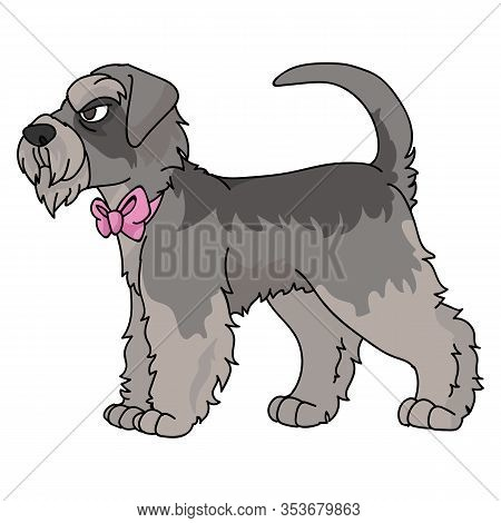 Cute Cartoon Schnauzer Dog With Pink Bow Vector Clipart. Pedigree Kennel Doggie Breed. Purebred Dome
