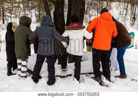 A Group Of Environmentalists Standing Around The Tree And Holding Hands. The Embrace Of The People S