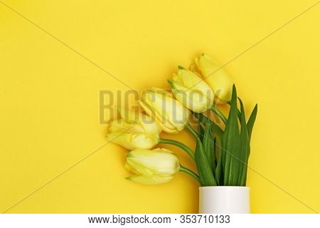 Vase With Bouquet Of Beautiful Yellow Tulips On Monochrome  Backdrop. Natural Flowery Background Wit