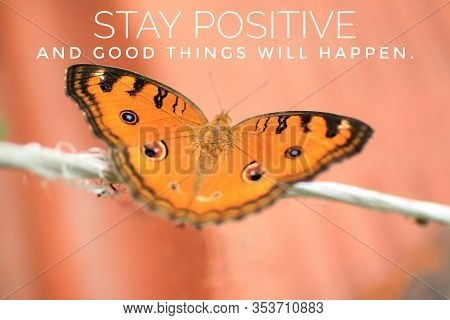 Inspirational Quote - Stay Positive, Good Things Will Happen. With Beautiful Butterfly  On Rope. Mot