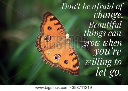 Inspirational Quote - Do Not Be Afraid Of Change. Beautiful Things Can Grow When You Are Willing To