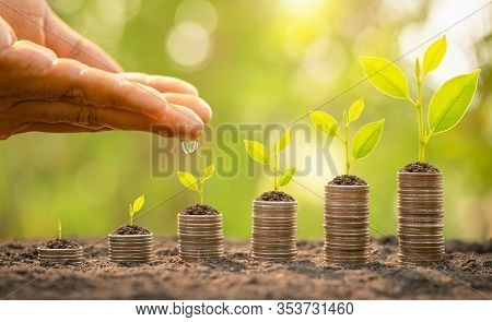 Hand Watering To Small Tree On Top Of Coin Stack. Business Success, Financial Or Money Growing Conce