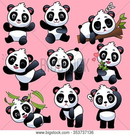 Cute Panda. Adorable Little Asian Bears In Different Poses, Sleeping And Playing, Eating Bamboo, Fun