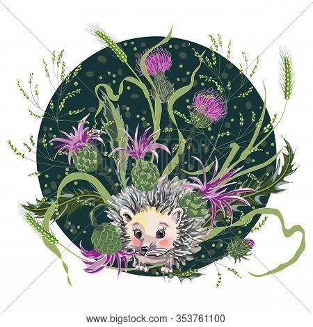 Cute Hedgehog Among Wild Herbs And Milk Thistle