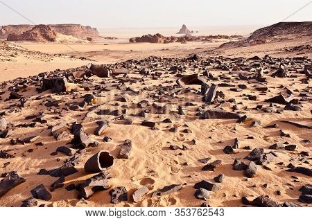 Unexpected Stones Testify To The Past - Sahara Landscape  With  Relicts Of A Petrified Forest - The
