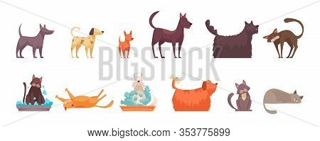 Cat And Dog Grooming Set With Hygiene Symbols Flat Isolated Vector Illustration