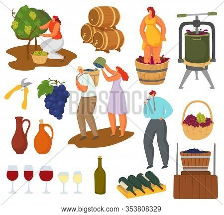 Wine And Winemaking Vector Illustration Set. Male And Female Farmer Winemaker Character Harvest Grap