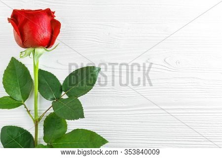 One Beautiful Red Rose With Green Leaves On White Wooden Background. Flat Lay, Top View, Copy Space.