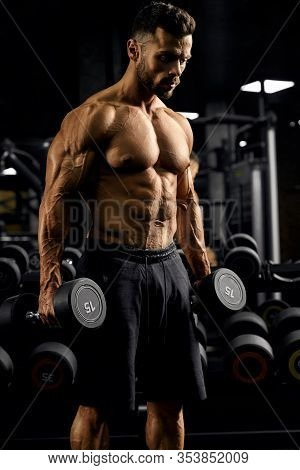 Portrait Of Shirtless Tensed Male Bodybuilder Holding Dumbbells In Arms, Looking Down. Side View Of