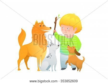 Boy Kid Playing Training Three Dogs, Throwing Stick Puppies Sitting Curious.