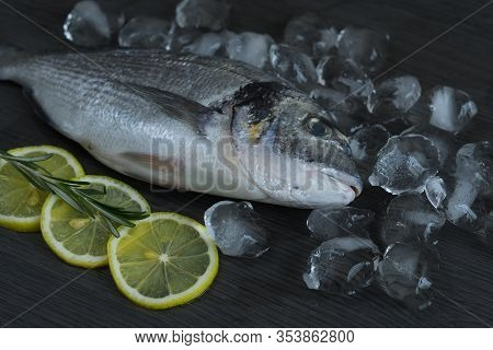 Raw Fish Dorado. Raw Fish Fillet On Iceand Lemon On Dark Background.healthy Food Concept. Mediterran