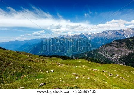 Spring meadow in Kullu valley in Himalaya mountains. Himachal Pradesh, India