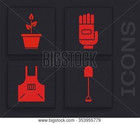 Set Shovel, Plant In Pot, Garden Gloves And Kitchen Apron Icon. Vector