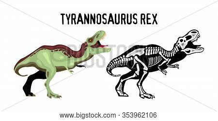 Tyrannosaur Rex Educational Poster For Study Of Appearance And Structure Of Of Extinct Predator Cart