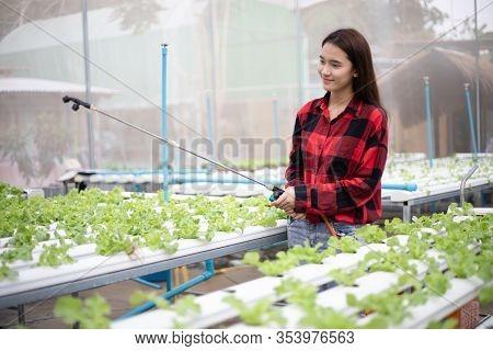 Asian Women Gardeners Watering Vegetables In The Garden.