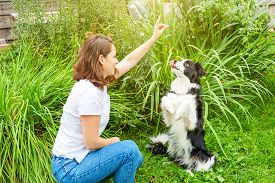 Smiling Young Attractive Woman Playing With Cute Puppy Dog Border Collie In Summer Garden Or City Pa