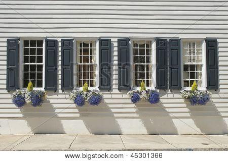 Charleston Windows