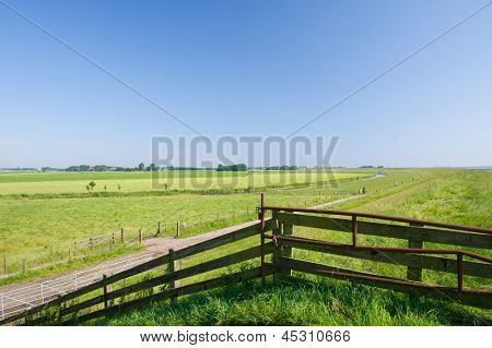 Dutch agricultural landscape in Friesland poster