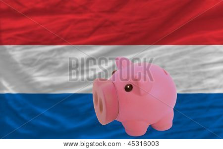Piggy Rich Bank And  National Flag Of Holland