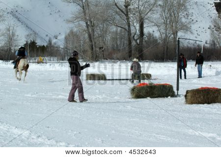 Ski Joring Rider And Skier 4