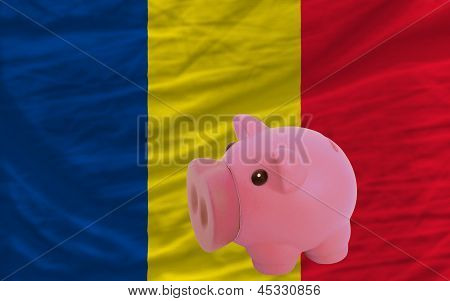Piggy Rich Bank And  National Flag Of Romania