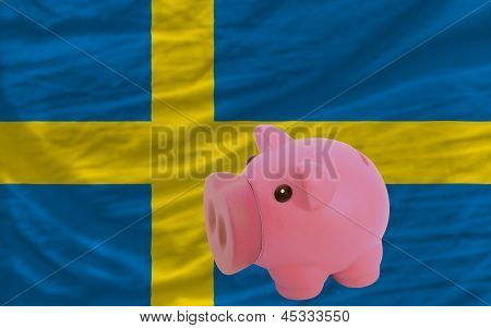 Piggy Rich Bank And  National Flag Of Sweden