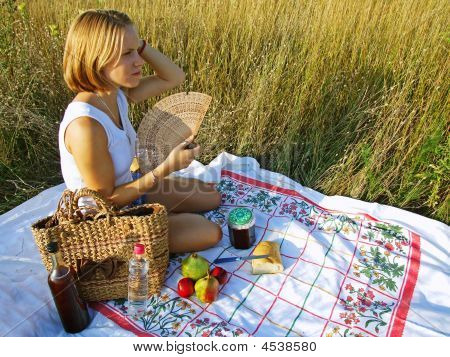 Outdoor Picnic