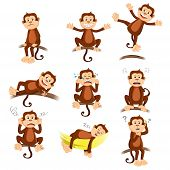 A vector illustration of monkey with different expression poster